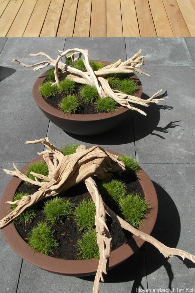 Kleine tuin in scandinavische sfeer te rotterdam overschie hoveniersbedrijf tim kok for Tuin modern design