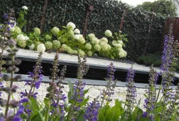 3 hortensia-border-vijver-waterpartij-koivijver-modernevijver-modern-tuinontwerp-met-vijver