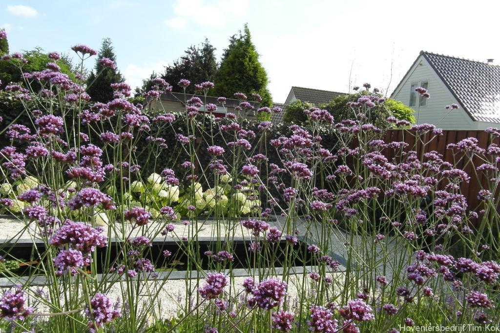 Moderne tuinen met grind. cheap moderne achtertuin met rechte lijnen