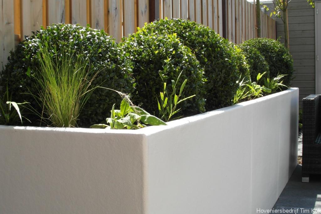 Kleine tuin in scandinavische sfeer te rotterdam overschie for Moderne kleine tuin